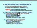 Língua Portuguesa - Concordância Nominal - Parte 4