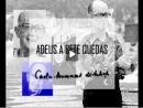 Adeus a Sete Quedas - Carlos Drummond de Andrade