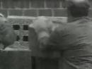 1961: Sobe o Muro de Berlim