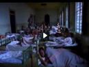 Bicho de Sete Cabeças - a dinâmica de funcionamento dos hospitais psiquiátricos para dependentes quí