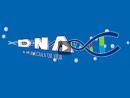 DNA - Molécula da Vida
