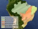 Conteúdos Complementares - Biomas Brasileiros