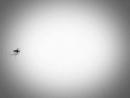 Campanha Contra a Dengue - Sintomas