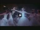 Tipos de Dança - Parte 1