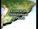 Conteúdos Complementares - Evolução do Desmatamento no Paraná