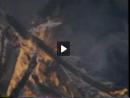 A Guerra do Fogo - importância do fogo para o homem primitivo