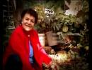 Campanha Paraná Alfabetizado - Maria Tonica Gomes (Dona de Casa)