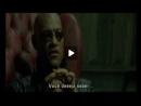 The Matrix - Escolha