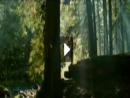 Na natureza selvagem - parte 1