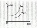 Eureka Vestibular 2007 - Química 11 - Pressão do Vapor e Temperatura de Ebulição - Parte 2