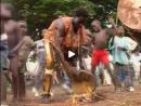 Guiné - A Festa do Pantanal