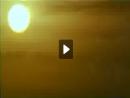 Amistad - Navio Negreiro - Caetano Veloso