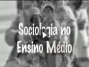 Sociologia no Ensino Médio - Tema, Conceito e Teoria 2