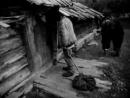 Tini zabutykh predkiv - Solidão