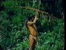 Indígenas do Estado do Paraná