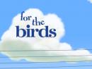 Birds - Animação