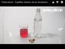Equilíbrio Químico do Íon Bicarbonato: Efeito da Concentração