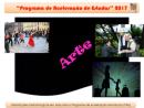Programa de Aceleração de Estudos - Arte