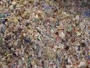 O plástico está destruindo nosso planeta