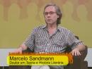 Nós da Educação – Marcelo Sandmann -Parte 2: A Poesia no Contexto Educacional.