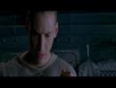 Matrix - Sociedade e relações de poder
